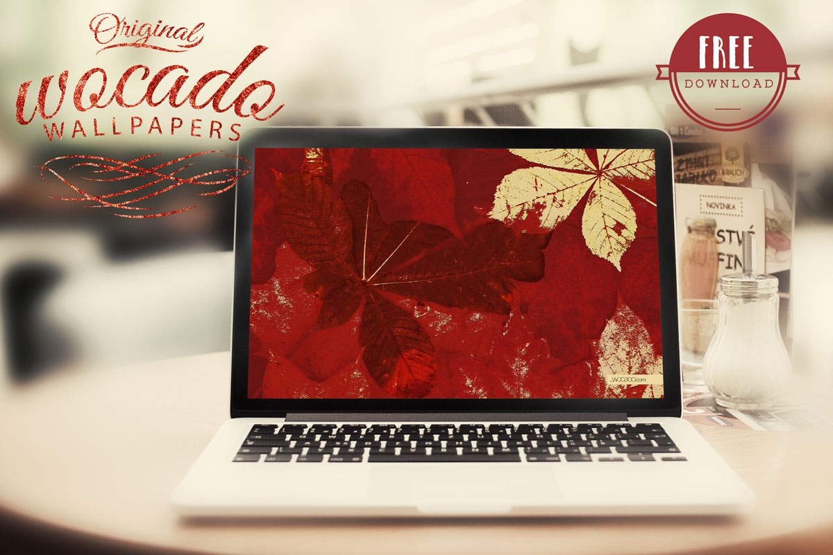 Red Autumn Leaves Wallpaper by WOCADO - FREE Download